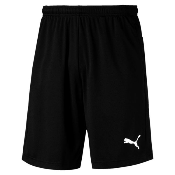 Puma LIGA Training Shorts 655316 03
